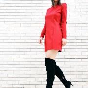 h-era mini burgundy dress
